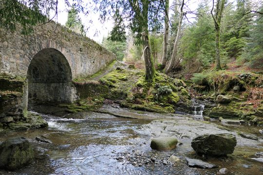 Game of Thrones Filming Location: Tollymore Forest