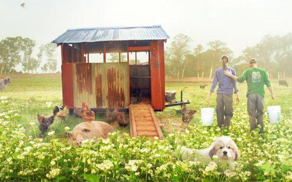 The Biggest Little Farm Review