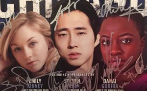 Walker Stalker Con Chicago Poster