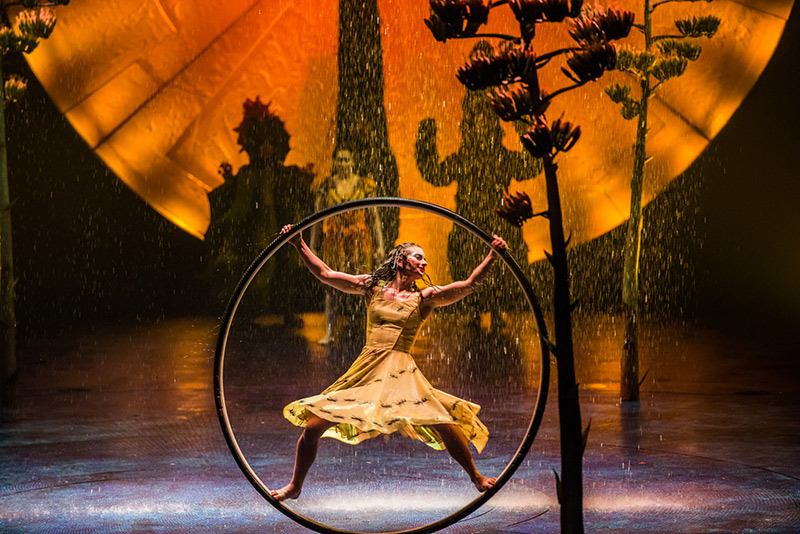 Cirque du Soleil Luzia Review: The Best Traveling Cirque to Date