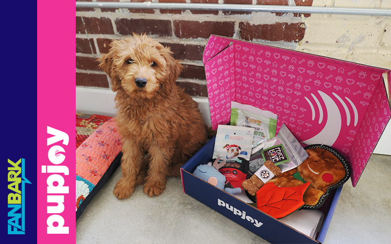 FanBark Unboxing: PupJoy Holiday Box Review