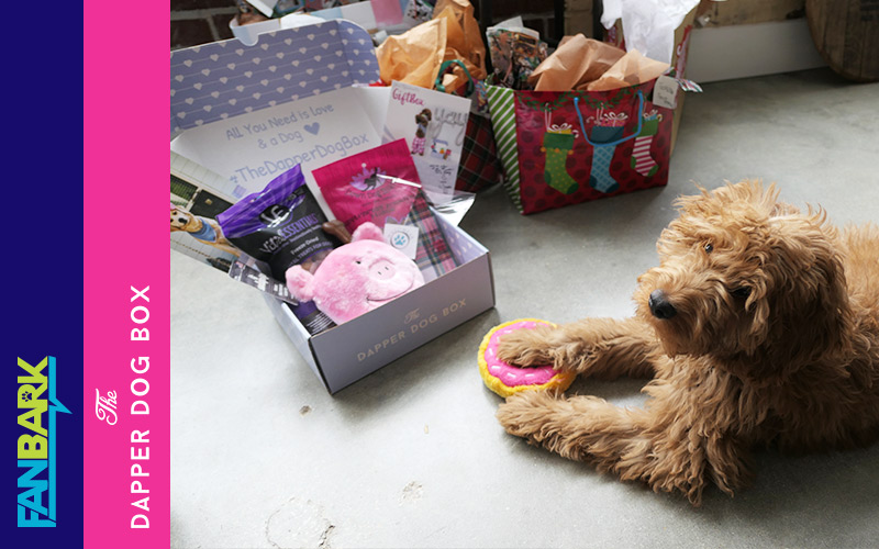 """FanBark Unboxing: The Dapper Dog """"Best Of"""" Box Review"""