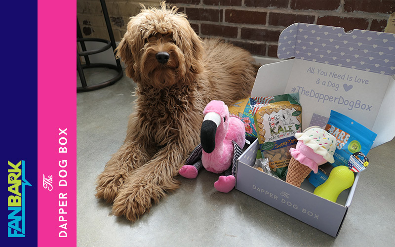 """FanBark Unboxing: The Dapper Dog Box """"Ready For Summer"""" Review"""