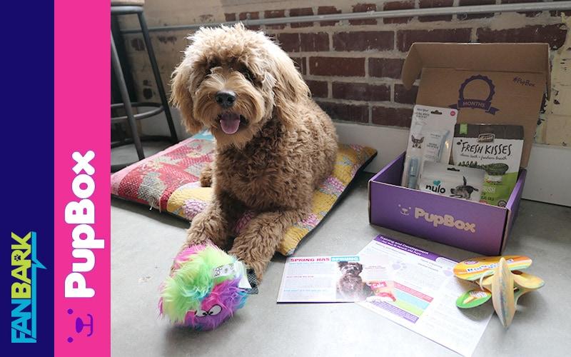 FanBark: Fozzie and the April Pupbox