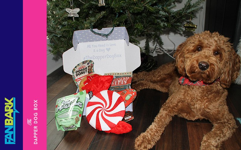 """FanBark Unboxing: """"Holiday 2018"""" The Dapper Dog Box Review"""