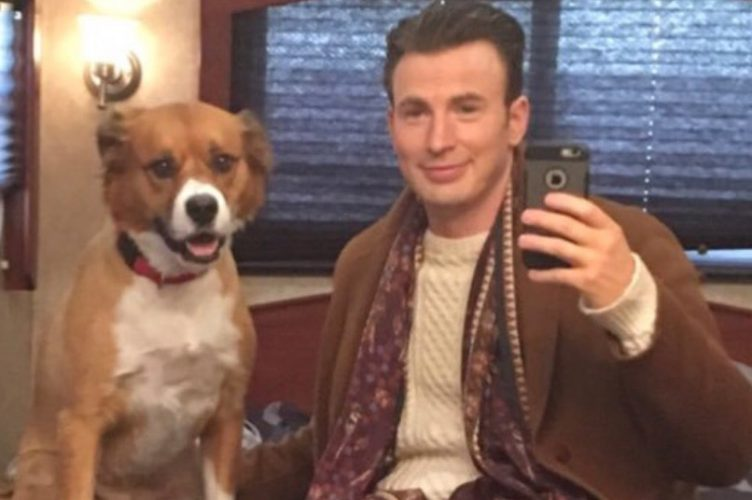 Chris Evans Superpower Dogs