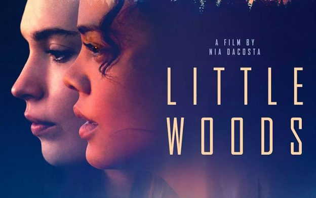 Little Woods Review