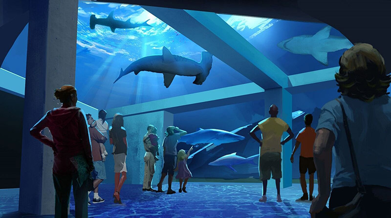 Georgia Aquarium Expansion