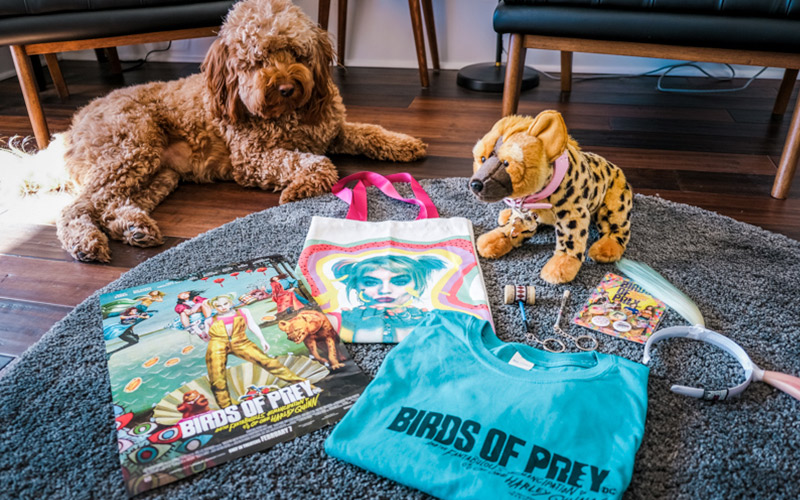 Birds Of Prey Contest Win A Prize Pack Of Swag From The Movie Fanbolt